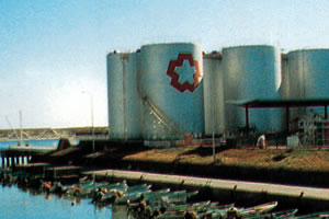 Repair on storage tanks in oil tank farm